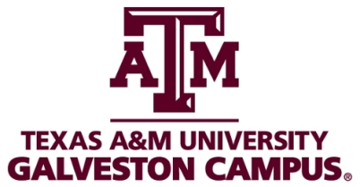 TX A&M Galveston
